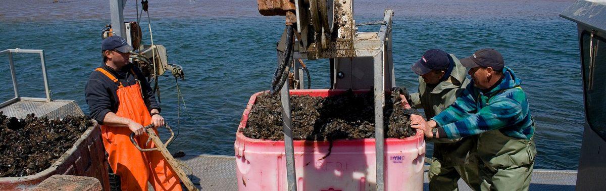 Bienvenue au Comité sectoriel<br> de main-d'oeuvre des pêches maritimes